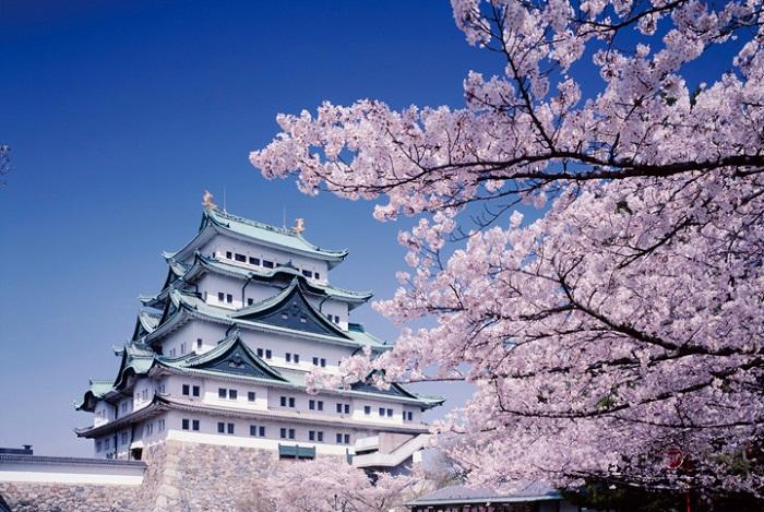 du lịch Nagoya tự túc