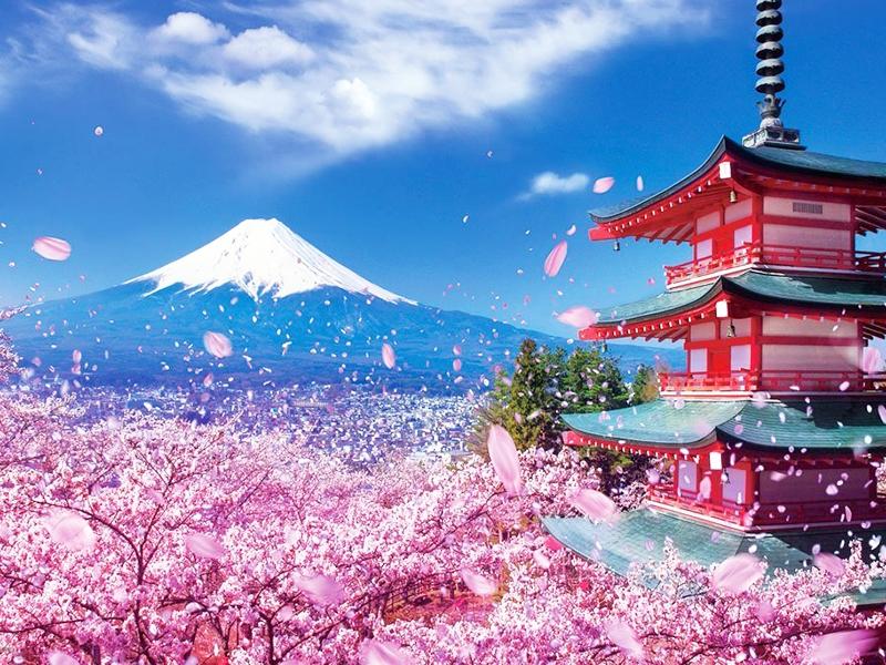 du lịch tự túc Nhật Bản