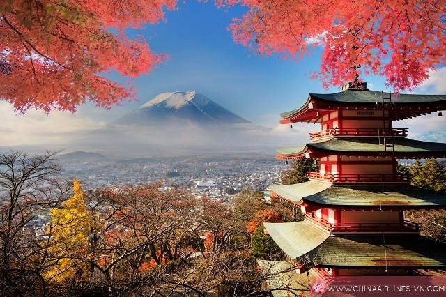 kinh nghiệm du lịch tự túc Tokyo